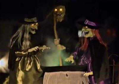 halloween-party-rental-virginia-fredericksburg-brewing-witch-trio