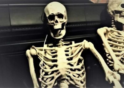 halloween-party-rental-virginia-fredericksburg-skeleton