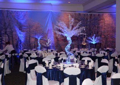 winter-party-theme-decoration-rental-fredericksburg-va-DSC_2886