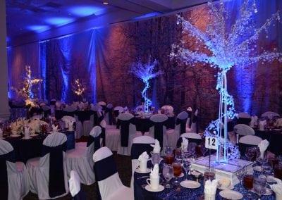 winter-party-theme-decoration-rental-fredericksburg-va-DSC_2923