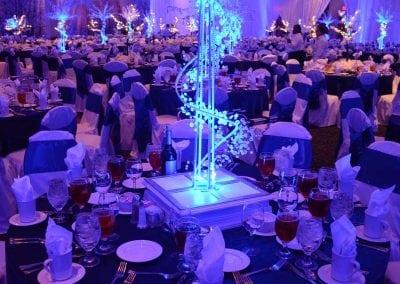 winter-party-theme-decoration-rental-fredericksburg-va-DSC_2943