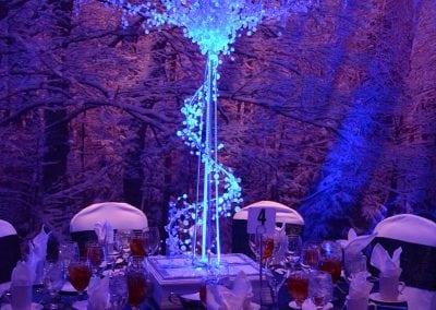 winter-party-theme-decoration-rental-fredericksburg-va-DSC_2956