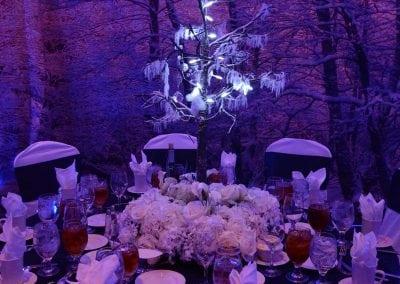 winter-party-theme-decoration-rental-fredericksburg-va-DSC_2958