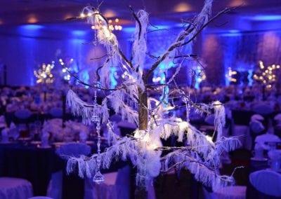 winter-party-theme-decoration-rental-fredericksburg-va-DSC_2978