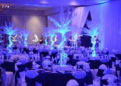 winter-party-theme-decoration-rental-fredericksburg-va-DSC_2874