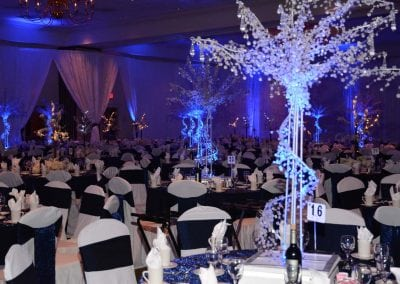 winter-party-theme-decoration-rental-fredericksburg-va-DSC_2895