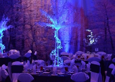 winter-party-theme-decoration-rental-fredericksburg-va-DSC_2917