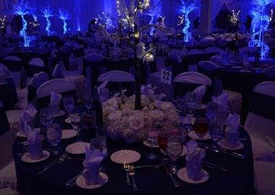 winter-party-theme-decoration-rental-fredericksburg-va-DSC_2926