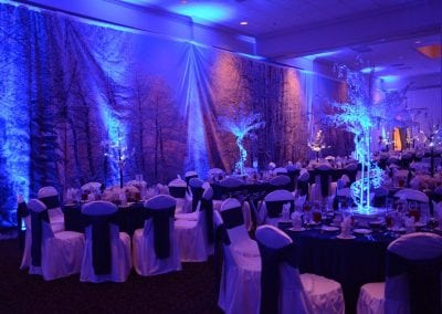 winter-party-theme-decoration-rental-fredericksburg-va-DSC_2933