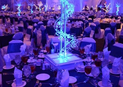 winter-party-theme-decoration-rental-fredericksburg-va-DSC_2943