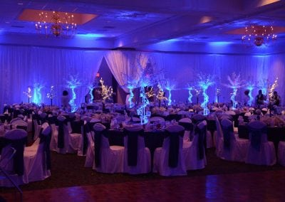 winter-party-theme-decoration-rental-fredericksburg-va-DSC_2944