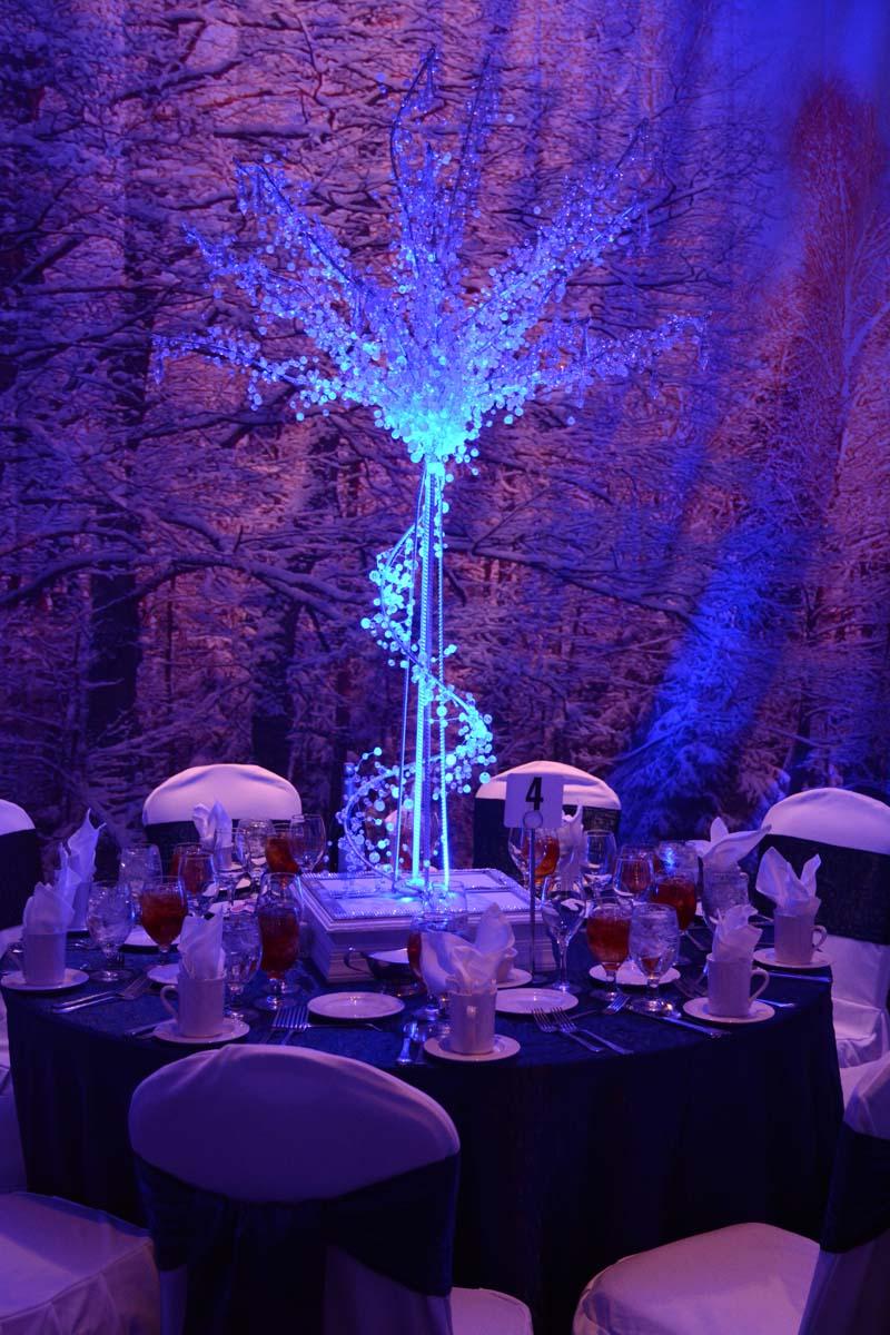 winter wonderland memorable moments. Black Bedroom Furniture Sets. Home Design Ideas