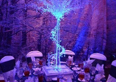 winter-party-theme-decoration-rental-fredericksburg-va-DSC_2957