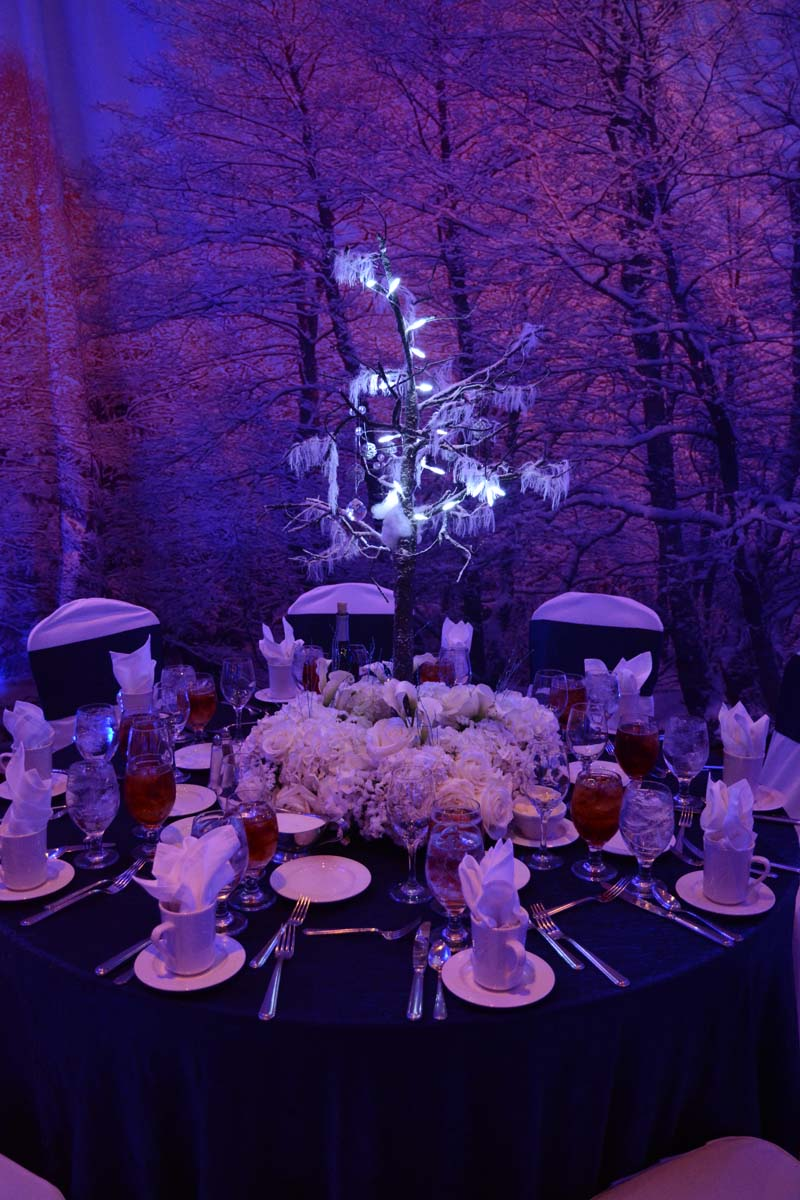 Winter Wonderland Memorable Moments