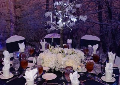 winter-party-theme-decoration-rental-fredericksburg-va-DSC_2959