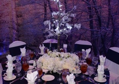 winter-party-theme-decoration-rental-fredericksburg-va-DSC_2960