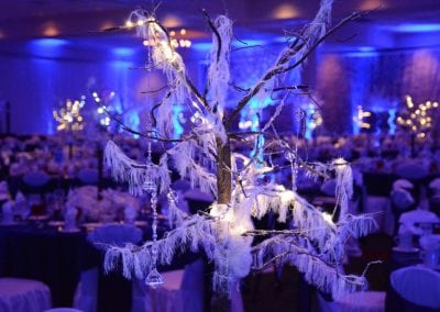 winter-party-theme-decoration-rental-fredericksburg-va-DSC_2978