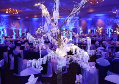winter-party-theme-decoration-rental-fredericksburg-va-DSC_2979