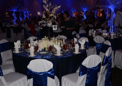 winter-party-theme-decoration-rental-fredericksburg-va-DSC_2984