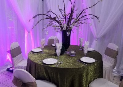 decoration-lighting-rental-reception-virginia-fredericksburg-expo-7