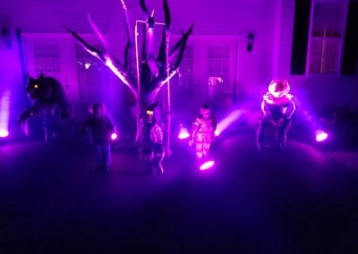 MM-halloween-party-rental-virginia-fredericksburg-SpookyTree-Prop