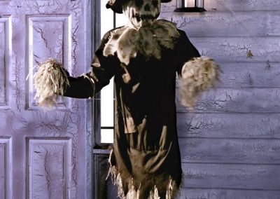 MM-halloween-party-rental-virginia-fredericksburg-Scarecrow2-Prop