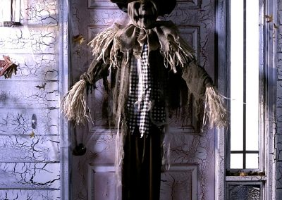 MM-halloween-party-rental-virginia-fredericksburg-Scarecrow1-Prop