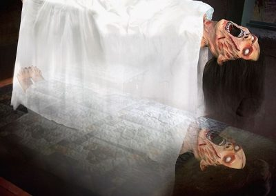 MM-halloween-party-rental-virginia-fredericksburg-scarewoman- Prop1